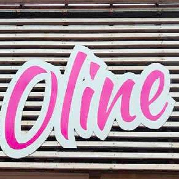Oline logo Dianalund Centret
