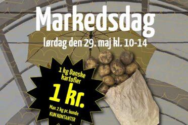 Billigste kartofler til markedsdag i Dianalund Centret 2021